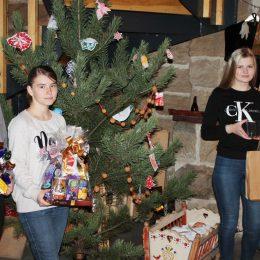 Pečeme vánoční cukroví